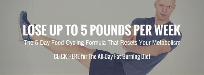 All-Day Fat Burning Diet