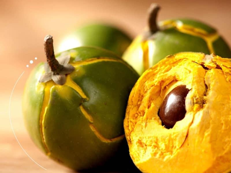 15 Fat Burning Foods - Lucuma