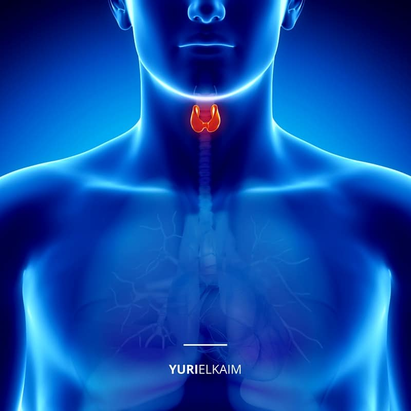 Is Your Low Thyroid Keeping You Fat (1)