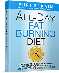 The All-Day Fat Burning Diet book image