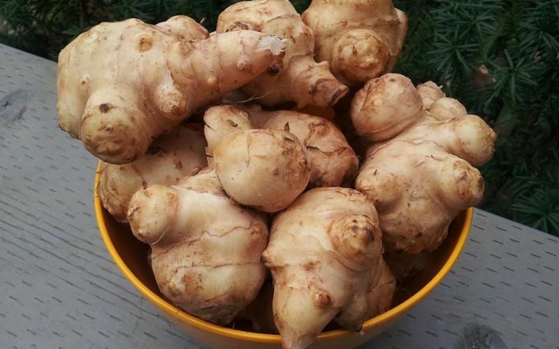 7 Liver-Healthy Foods - Jerusalem Artichoke