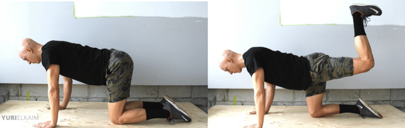 Best Glute Exercises - Quadruped Hip Extension