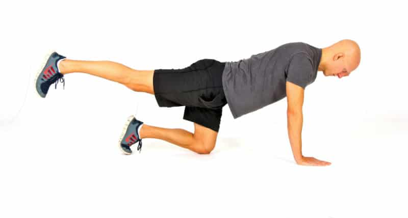 Core Strength Exercise - The Bird Dog Extended Position