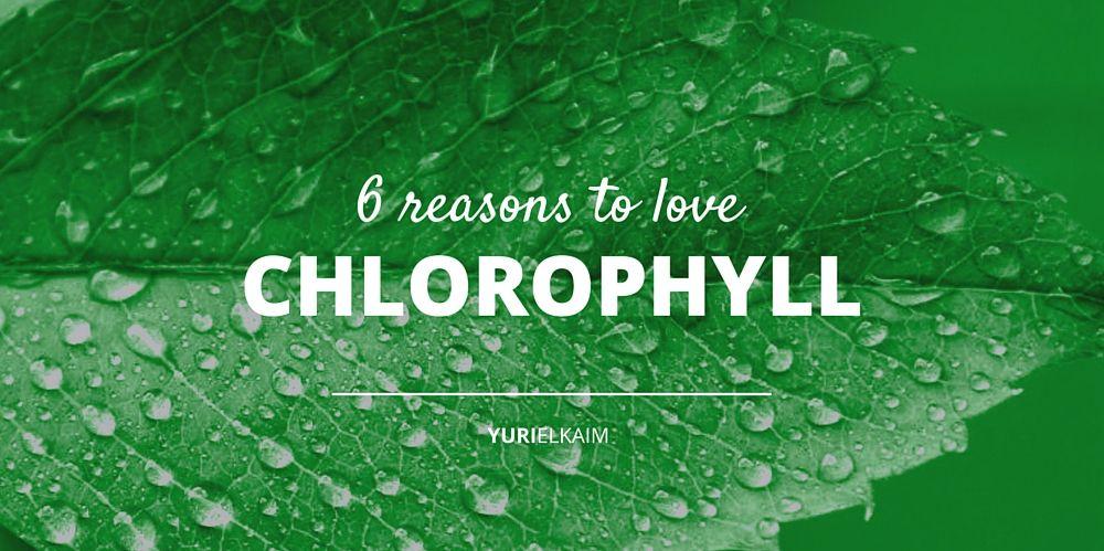 6 massive health benefits of chlorophyll you should want | yuri elkaim, Skeleton