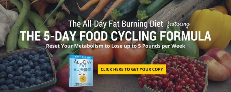 All-Day Fat Burning Diet Book