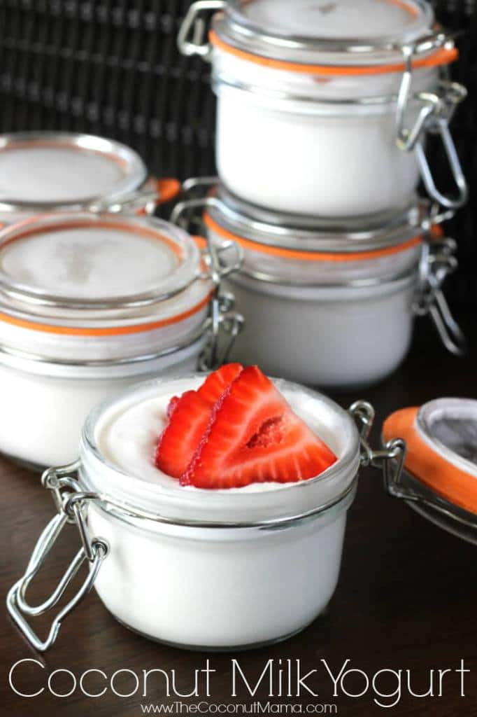 Coconut Milk Yogurt - The Coconut Mama