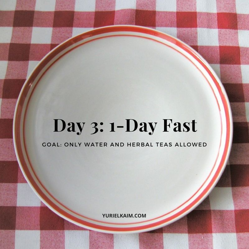 Day 3: 1-Day Fast