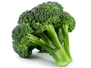 Foods Highest in Calcium - Broccoli